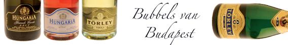 Bubbels van Budapest